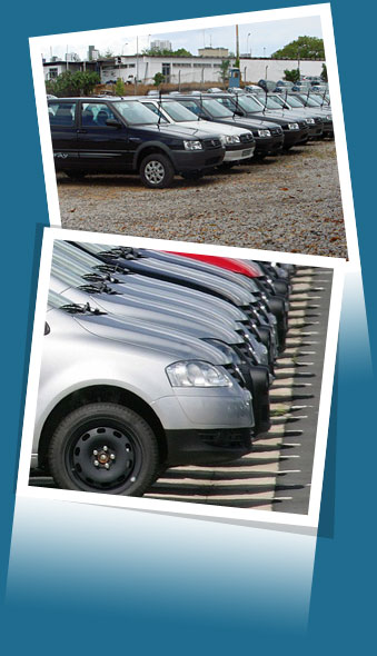 Empresa - Locadora de Carro